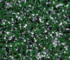 bml_pigmented_quartz-36